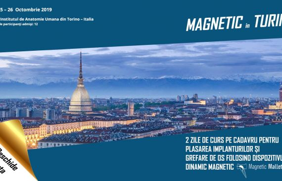 MAGNETIC in TURIN